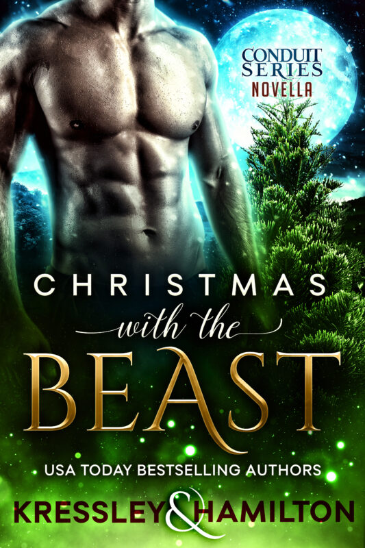 Christmas with the Beast